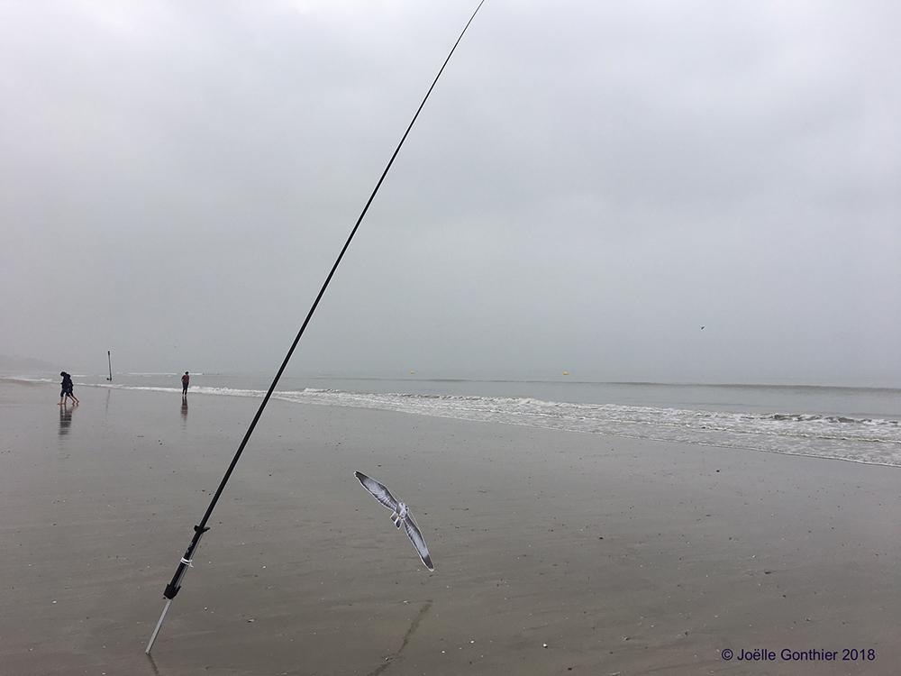 Canne à pêche et effaroucheur